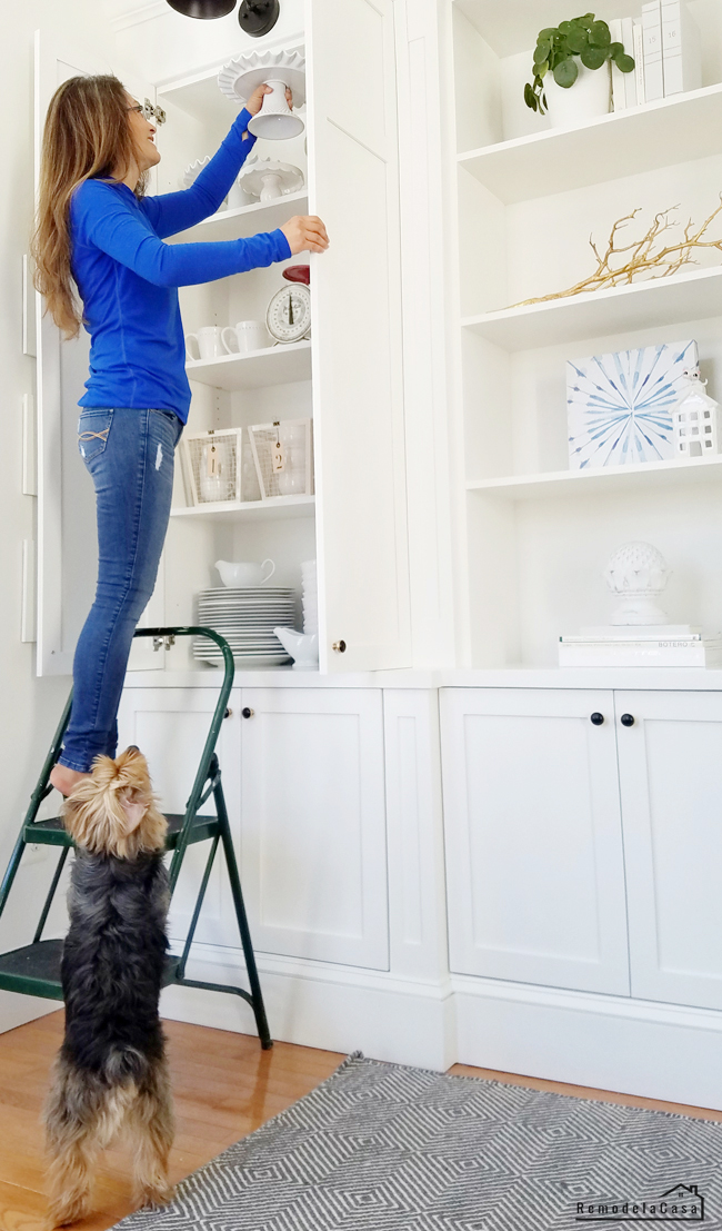Cristina Garay and her pet Louie styling the shelves.