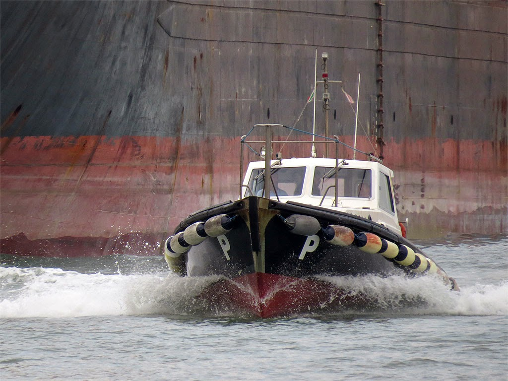 Pilot boat, port of Livorno