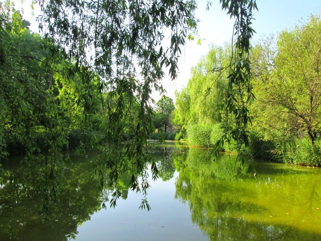La laguna artificial del Parque de Marxalenes - Paseos Fotográficos Valencia