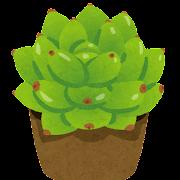 春萌のイラスト(観葉植物)