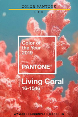 Living Coral Color Patone 2019