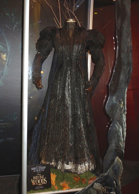 Meryl Streep Witch costume Into the Woods