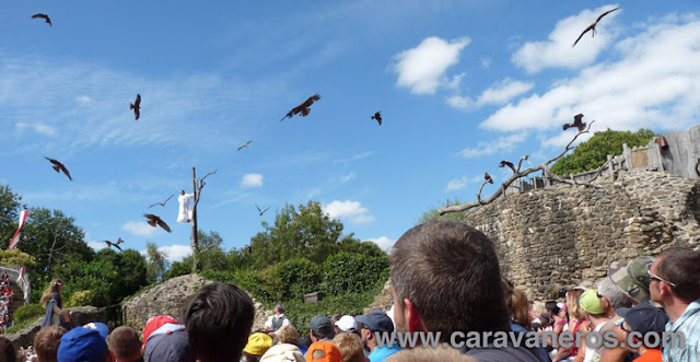 Fot de El vuelo de las aves fantasmas sobre las ruinas del antiguo castillo del Puy du Fou | caravaneros.com