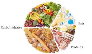protein yağ ve karbohidrat