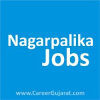 Mahudha Nagarpalika Recruitment 2018 for M.I.S. / IT Expert Posts
