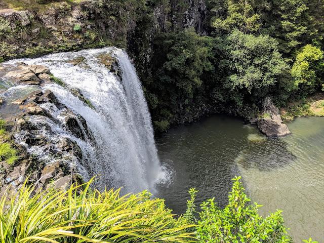 Paihia to Auckland: Whangarei Falls