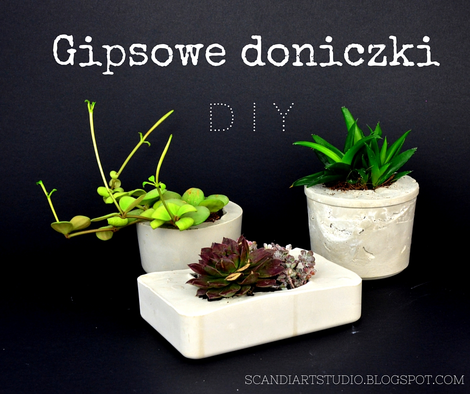 Scandiart Studio Zrób Sobie Doniczkę Za Złotówkę