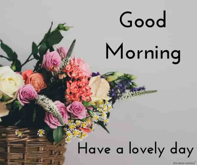beautiful good morning pictures with flowers