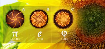 Angka Fibonacci (Angka Tuhan)