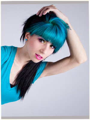 Two tone hair color dark on top light on bottom hair color ideas black and blue hair color two tone hair color ideas for long hair solutioingenieria Gallery