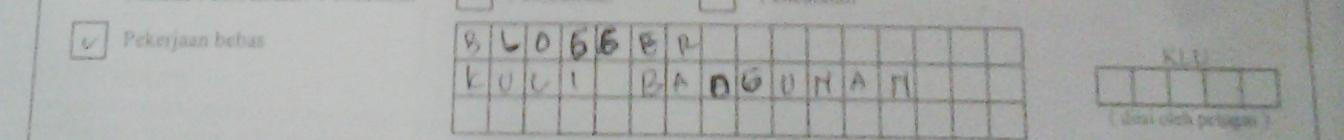 Formulir Pengajuan Nomor NPWP