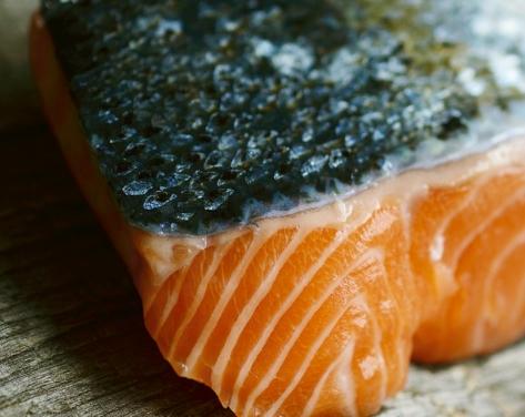 鮭 効果 効能 主要な四つ