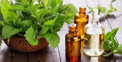 4 Minyak yang Ampuh untuk Bantu Menurunkan Berat Badan