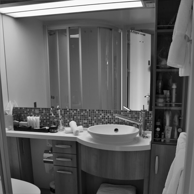 Celebrity Equinox Bathroom