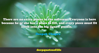 There are no extra pieces in the universe. Everyone is here because he or she has a place to fill, and every piece must fit itself into the big jigsaw puzzle.   Deepak Chopra