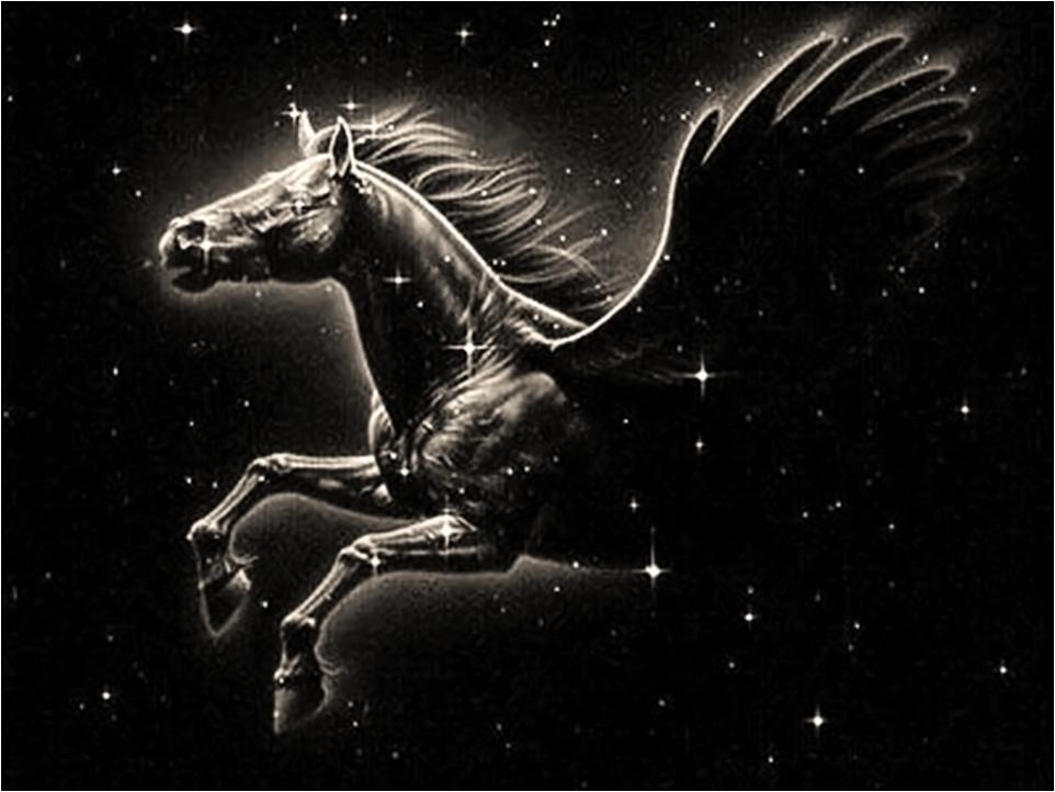 FILOSOFIA IMORTAL  Projeto Pegasus - Teletransporte existe há 40 anos! 2ea26039637