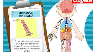 http://www.colgate.com.br/PDP/MundodaCrianca/BR/Images/jogos/corpo_humano.swf