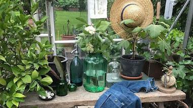 Una de Instagram. Decoración y jardín con Gertruds rum