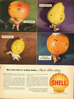 Shell - Now that they are eating better