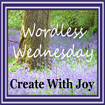 http://www.create-with-joy.com/2017/04/wordless-wednesday-a-taste-of-the-wild.html