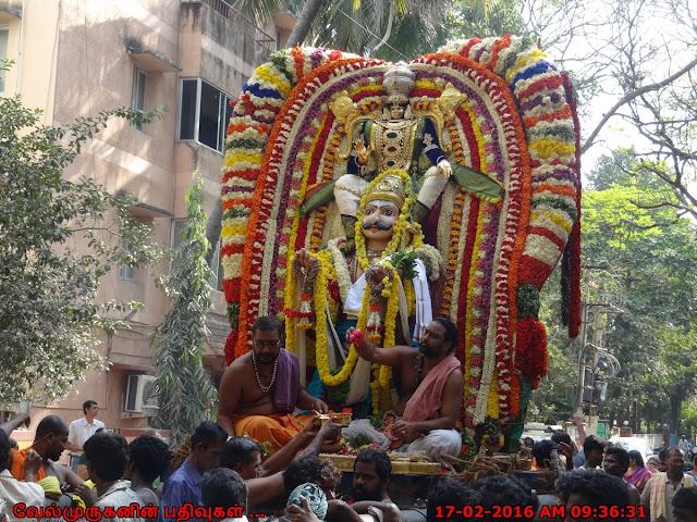 Garuda Sevai Anandha Padmanabha Swamy