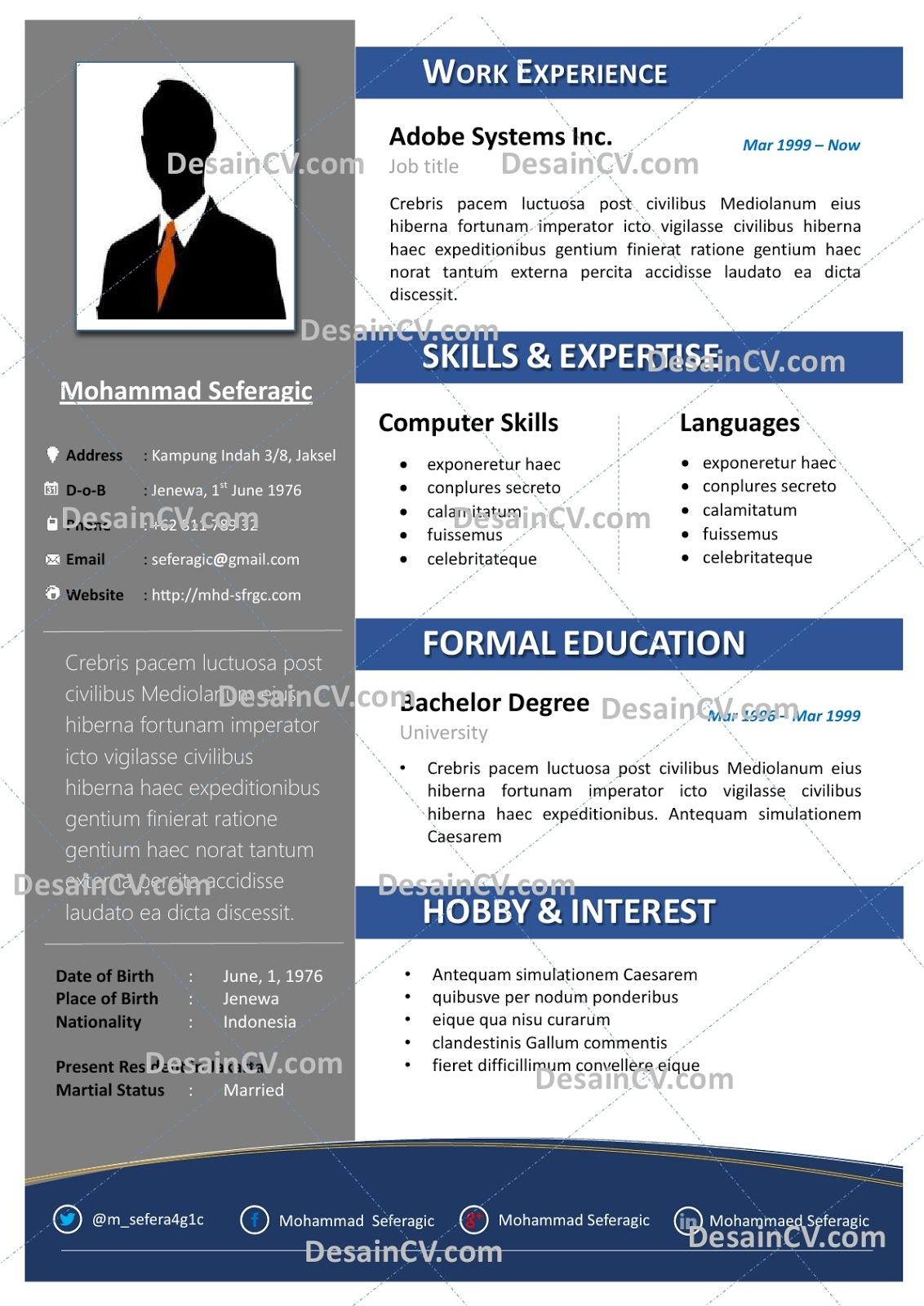 Desain Cv Kreatif Professional Contoh Curriculum Vitae Resume