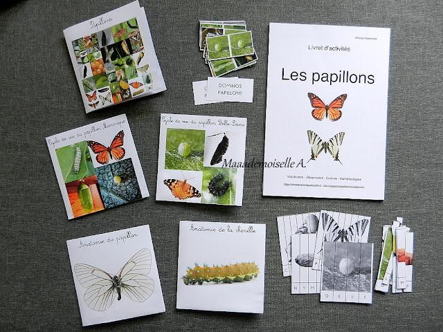 || Cartes de nomenclature et livret d'activités : Papillons, cycle de vie et anatomie (papillon et chenille)