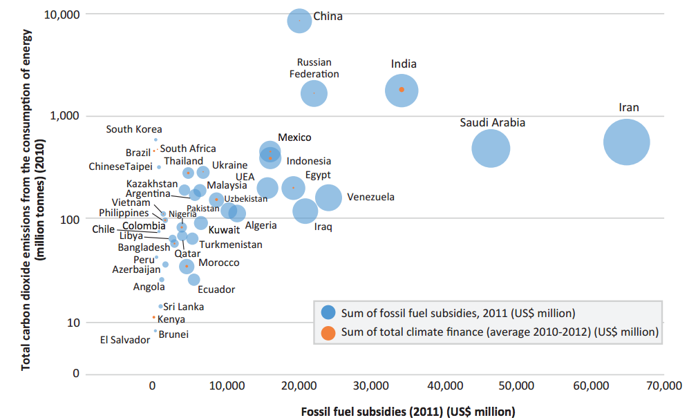 fossil fuel subsidies look like in more than 40 developing countries