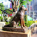 La fidelidad de Hachikō, una increíble historia de lealtad canina