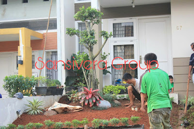 Desain Landscape Taman Rumah