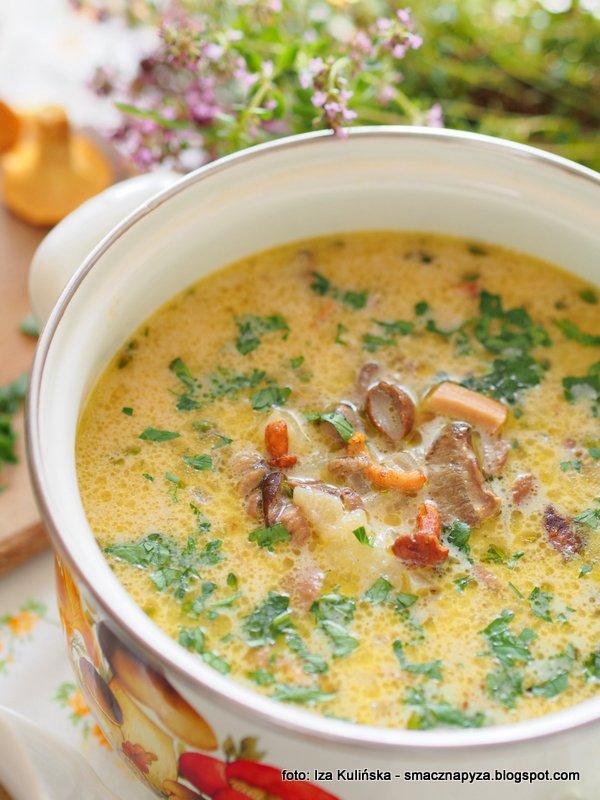 zupa ze swiezych grzybow, grzybowka, swieze grzyby, zupa dnia, najsmaczniejsza grzybowa, grzyby lesne, hit sezonu, obiad