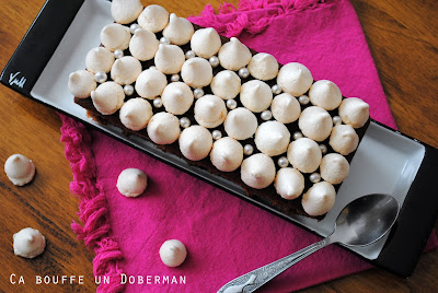 http://cabouffeundoberman.blogspot.fr/2017/02/gateau-au-chocolat-meringue.html