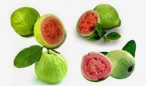http://rajaramuan.blogspot.com/2014/09/manfaat-buah-jambu-biji-untuk-kesehatan.html