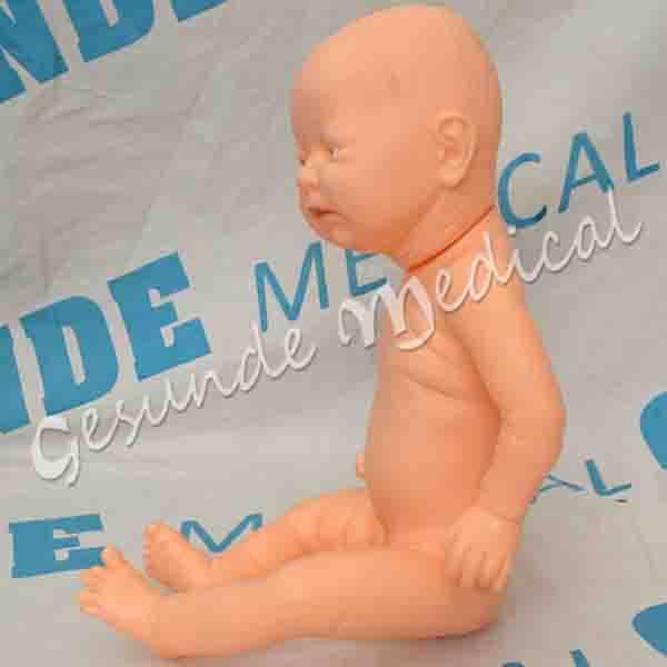 agen manikin bayi