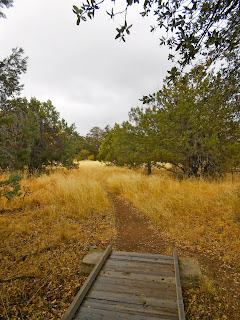 gravesite of johnny ringo southern arizona