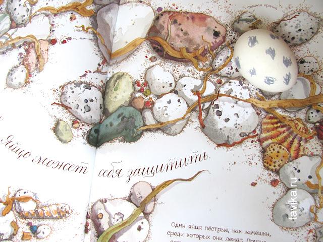 Яйцо любит тишину - занятие для детей по книге
