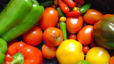 Sumber vitamin C, paprika, tomat, jambu biji, jeruk lemon