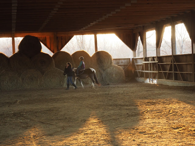 horseback riding lesson outdoor arena