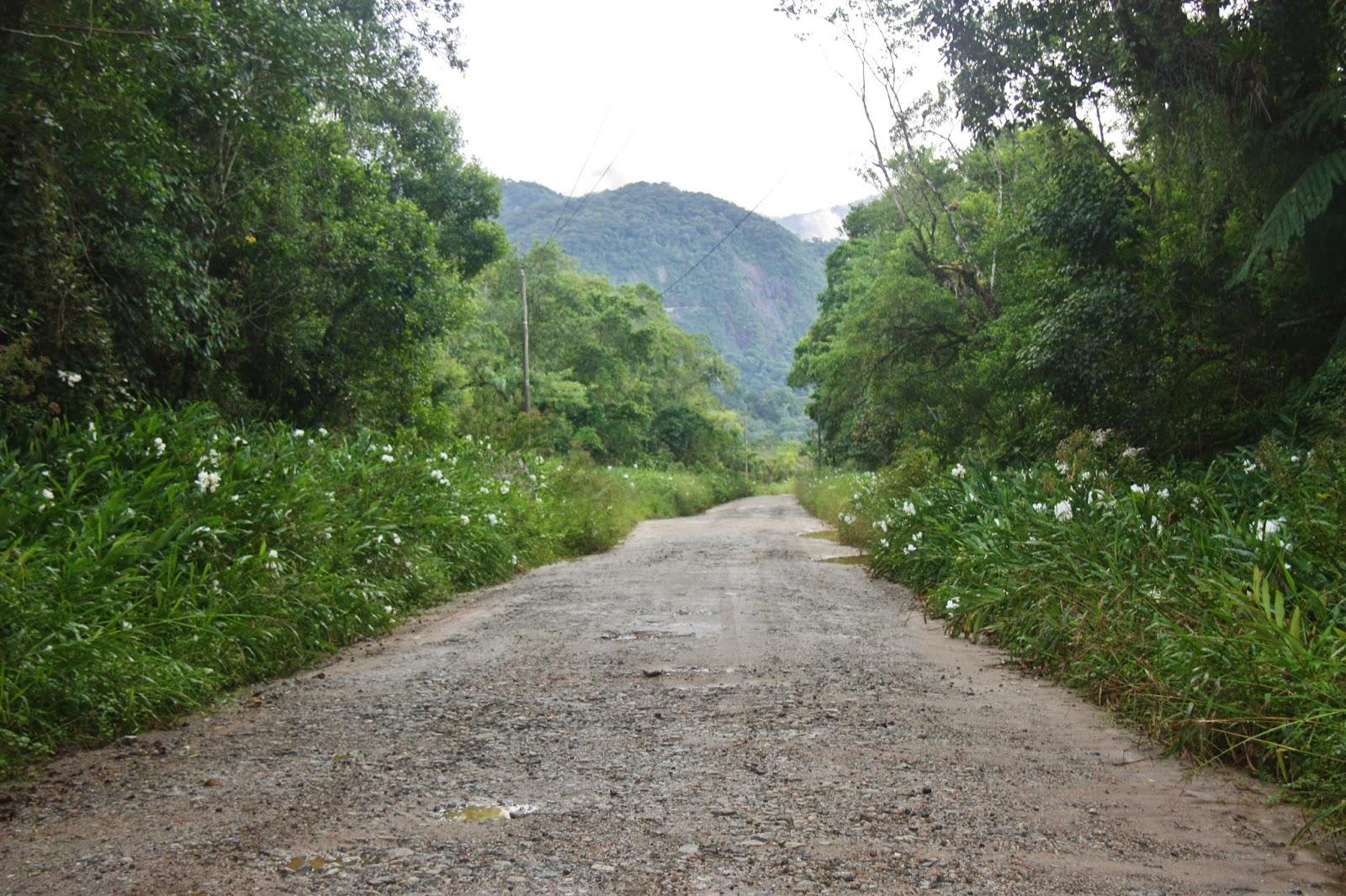 Caminho para Barra do Una, na Estação Ecológica Juréia-Itatins