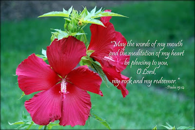 Psalm 19:14 May the words of my mouth, and the meditations of my heart, be pleasing