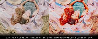 http://ginny1xd.deviantart.com/art/037-PSD-coloring-Meadow-620108632?q=gallery%3AGinny1xD%2F50581111&qo=9