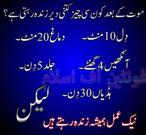 islamic,urdu hadees,ur...