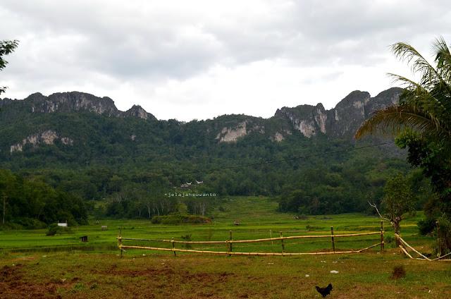 Pemandandan bentang alam Tana Toraja sebelum menuju rante tempat Rambu Solok di Rantepao || jelajahsuwanto