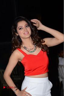 Actress Richa Panai Pictures at Eedu Gold Ehe Gummadikaya Function .COM 0092.JPG