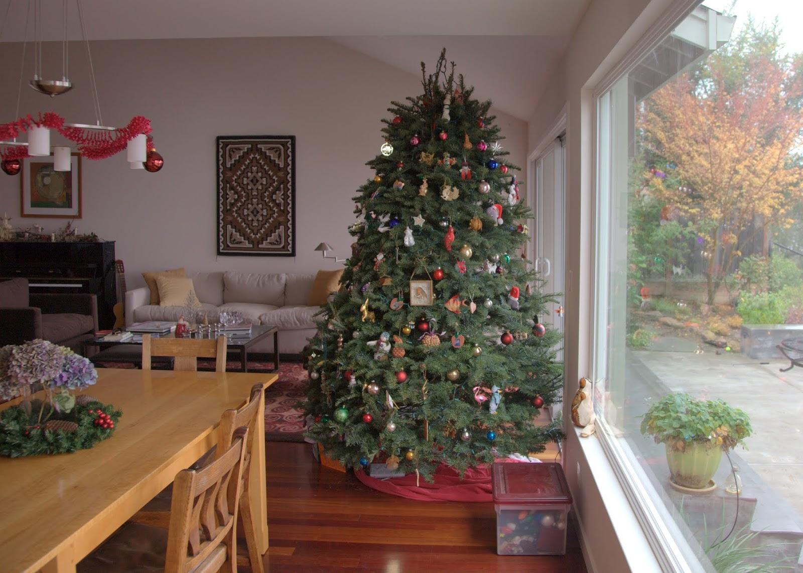 Jib jab with Tim: Christmas Tree