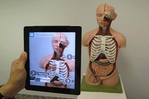 Ejemplo de realidad aumentada aplicada sobre un modelo anatómico