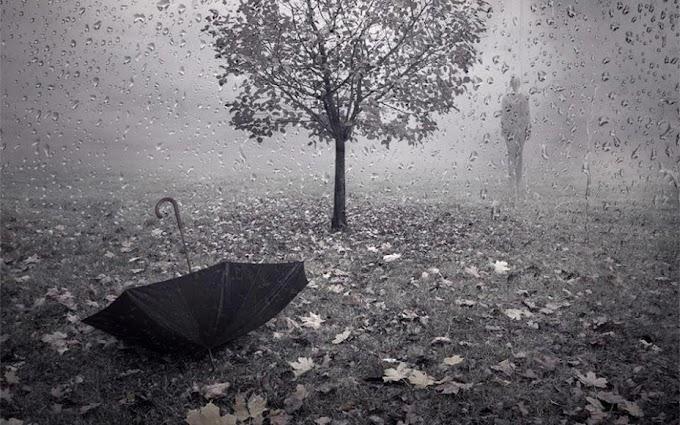 La lluvia deja reflejos