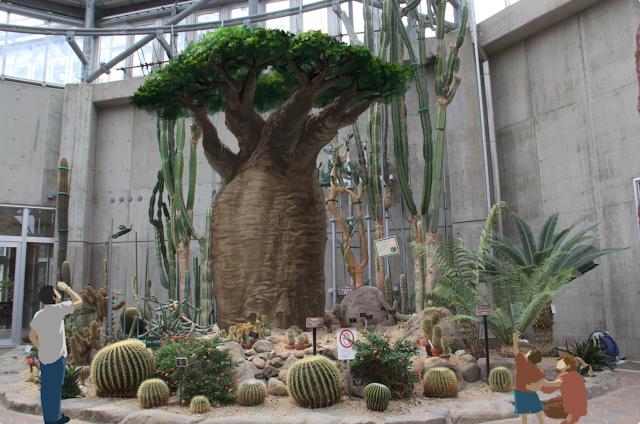 予想CG:バオバブの木 ときわ公園、植物園もリニューアル。 プラントハンター西畠清順が手がける?