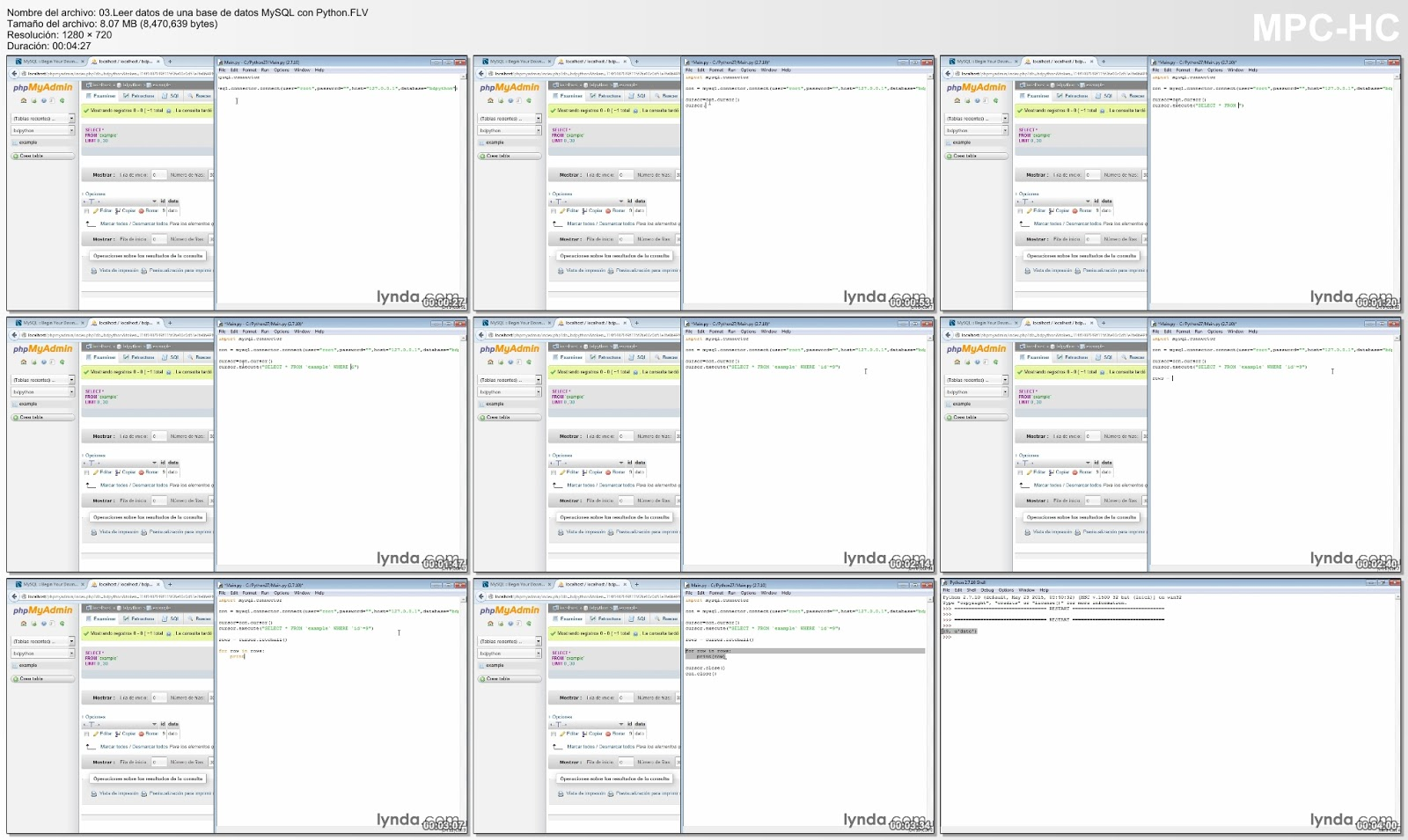 Leer datos de bases de datos con Python