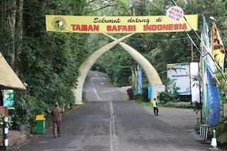 Tempat Wisata di Bogor Nuansa Alam di Taman Safari